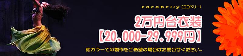 二万円台衣装